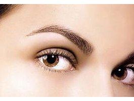 眉毛的生长周期是多久呢 眉毛种植效果怎么样