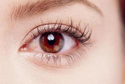 桔梗花的花语是什么呢? 多点定位双眼皮可以长久吗 较多维持十年 知识库 第2张