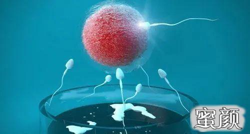 https://img.miyanlife.com/mnt/timg/210308/2125505628-0.jpg 医生常被咨询的七个问题之一——试管婴儿移植后出血该如何应对? 知识库 第1张