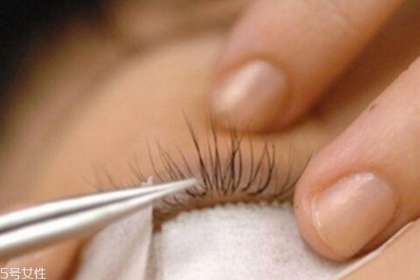 哪些人不适合嫁接睫毛 种植眼睫毛有损害 哪些人不适合嫁接睫毛 种植眼睫毛有损害 知识库 第1张