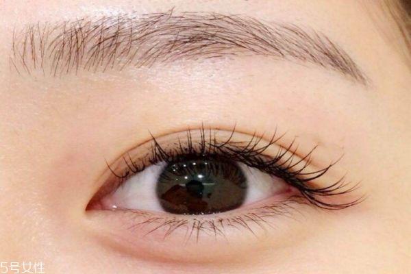 哪些人不适合嫁接睫毛 种植眼睫毛有损害 哪些人不适合嫁接睫毛 种植眼睫毛有损害 知识库 第2张