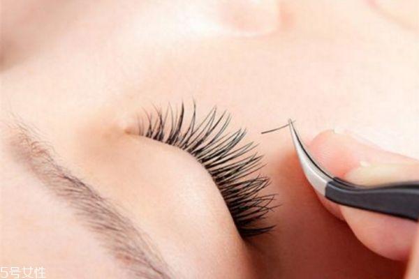 嫁接睫毛可以保持多久 种睫毛怎么保持久一点 嫁接睫毛可以保持多久 种睫毛怎么保持久一点 知识库 第2张