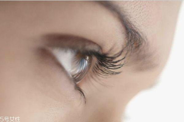 种植睫毛能管多久 种睫毛能维持多长时间 种植睫毛能管多久 种睫毛能维持多长时间 知识库 第1张