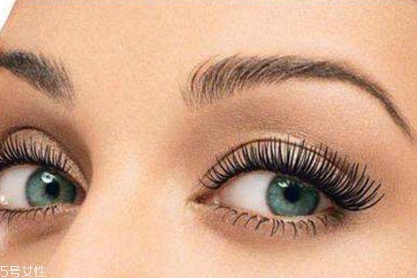 种植睫毛能管多久 种睫毛能维持多长时间 种植睫毛能管多久 种睫毛能维持多长时间 知识库 第2张