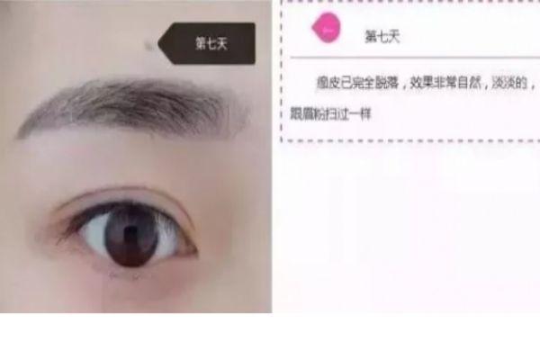 纹眉几天会变细 纹眉七天的变化 纹眉几天会变细 纹眉七天的变化 知识库 第8张